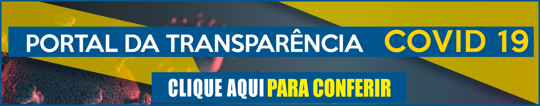 Portal da transparencia layout